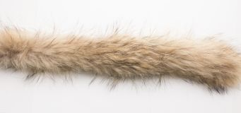 Lynx fur. Texture. Stock photos Top view. Close-up Royalty Free Stock Images