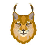 Lynx head face illustration style Flat Royalty Free Stock Images