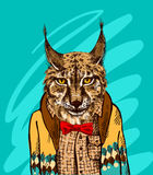 Lynx in knitted sweater. Vector illustration for greeting card, poster, or print on clothes. Fashion Style drawing. Hipster Royalty Free Stock Image