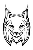 Lynx mascot royalty free stock photo