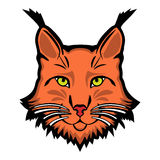 Lynx mascot logo. Head of lynx isolated vector illustration Royalty Free Stock Photography