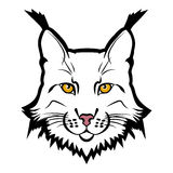 Lynx mascot logo. Head of lynx isolated vector illustration Royalty Free Stock Image