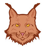 Lynx mascot logo. Head of lynx isolated vector illustration Stock Photography