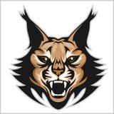 Lynx mascot logo. Head of lynxes isolated vector illustration. Stock Photography