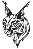Lynx`s head Royalty Free Stock Photo