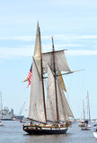 Lynx Schooner Stock Photo