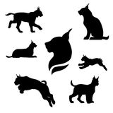 Lynx set vector. Lynx set of black silhouettes. Icons and illustrations of animals. Wild animals pattern royalty free illustration