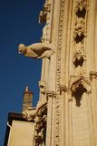 Lyon cathedral gargoyles detail Royalty Free Stock Photo