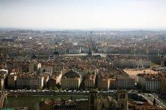 Lyon del colmo ascendente Fotografía de archivo