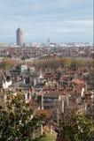 Lyon e telhados Fotos de Stock Royalty Free