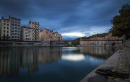 Lyon foncé Photographie stock libre de droits