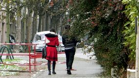 Rear view of couple walking with Christmas fir tree. LYON, FRANCE - CIRCA 2018: Rear view of couple walking on the covered with snow tree male holding a green stock video