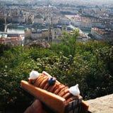Lyon, Francia de una opinión del chef de repostería Foto de archivo libre de regalías