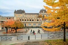 Lyon im Herbst Stockfotografie