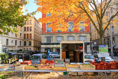 Lyon marknad Royaltyfri Bild