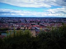Lyon sikt arkivfoton