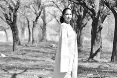 Lyrical woman against tree trunks Royalty Free Stock Photo