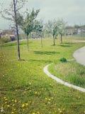 Lyrischer Weg Stockfoto