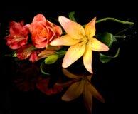 Lys rouges Buch, bouquet de fard à joues de fleur de fleur Images libres de droits