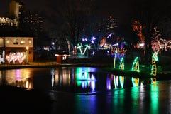 lysande skärm på den nya Year's helgdagsaftonen på Lincoln Park Zoo i Chicago Royaltyfri Fotografi