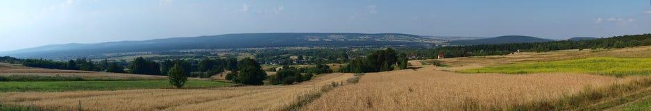 Lysogory, montagne di Swietokrzyskie, Polonia Fotografie Stock Libere da Diritti