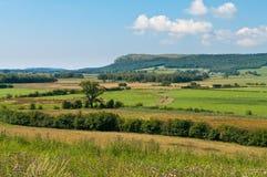 Lyth Valley Royalty Free Stock Photo