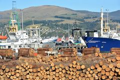 Pine Logs Await Export on ships docked in Lyttelton Harbour Royalty Free Stock Photos