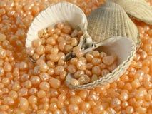 lyx för kaviar för badhuvuddelomsorg royaltyfri fotografi