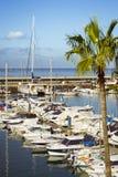 Lyx seglar på skeppsdockan på det Puerto för yachtklubban kolonet, Costa arkivfoton