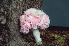 Lyxig brud- bukett av vita pioner och rosor nära trädet Royaltyfria Bilder