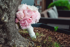 Lyxig brud- bukett av vita pioner och rosor nära trädet Royaltyfri Foto
