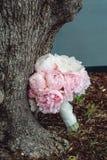 Lyxig brud- bukett av vita pioner och rosor nära trädet Royaltyfri Bild