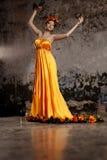 Lyxig dam i siden- klänning Arkivfoto