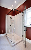 lyxig dusch Royaltyfria Bilder