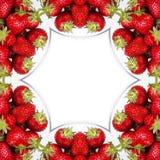 lyxig jordgubbe Arkivbild