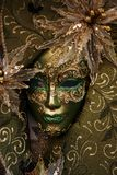 lyxig maskering fotografering för bildbyråer