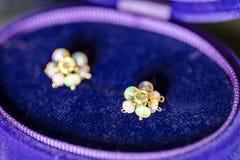 Lyxig opal och rosa färgopal i ett lila- och blåttsmyckenfall royaltyfria foton