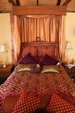 lyxig purpur red för underlag Arkivbilder