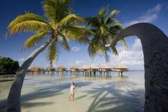 Lyxig semestersemesterort - franska Polynesia Royaltyfri Bild