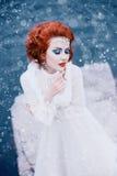 Lyxig snödrottning Arkivfoto