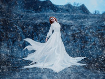 Lyxig snödrottning royaltyfri fotografi