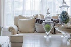 Lyxig soffa för jordsignalfärg i vardagsrum hemma fotografering för bildbyråer