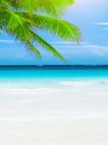 Lyxig strandsemesterort Arkivfoto