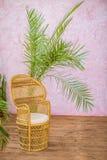 Lyxig träfåtölj Fotografering för Bildbyråer
