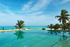 Lyxig tropisk simbassäng Arkivbilder
