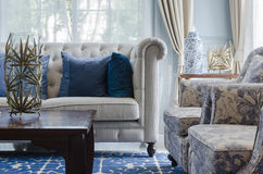 Lyxig vardagsrum med soffan på blåttmodellmatta hemma royaltyfri bild