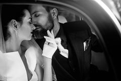 Lyxiga eleganta brölloppar som kysser och omfamnar i stilfullt b arkivbild