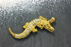 Lyxiga smycken med stenar Smycken för kvinna` s Royaltyfri Foto