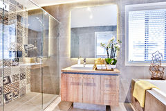 Lyxigt badrum med ett tvättande område och dusch arkivbilder
