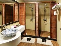 Lyxigt badrumduschrum Arkivfoton